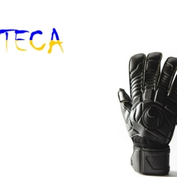 Выбор вратарских перчаток в Украине